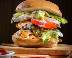 Fast Food 1 - Burger